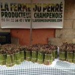 Asperges vertes vente à la ferme et sur les marchés 77, 10